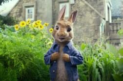 peter-rabbit-film