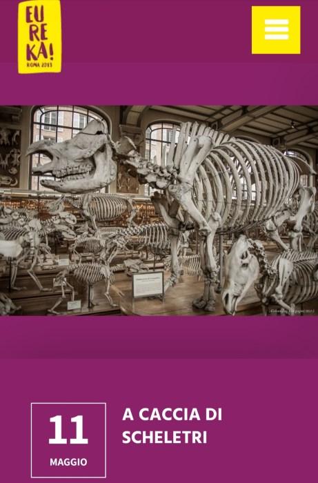 A caccia di scheletri Eureka 2019