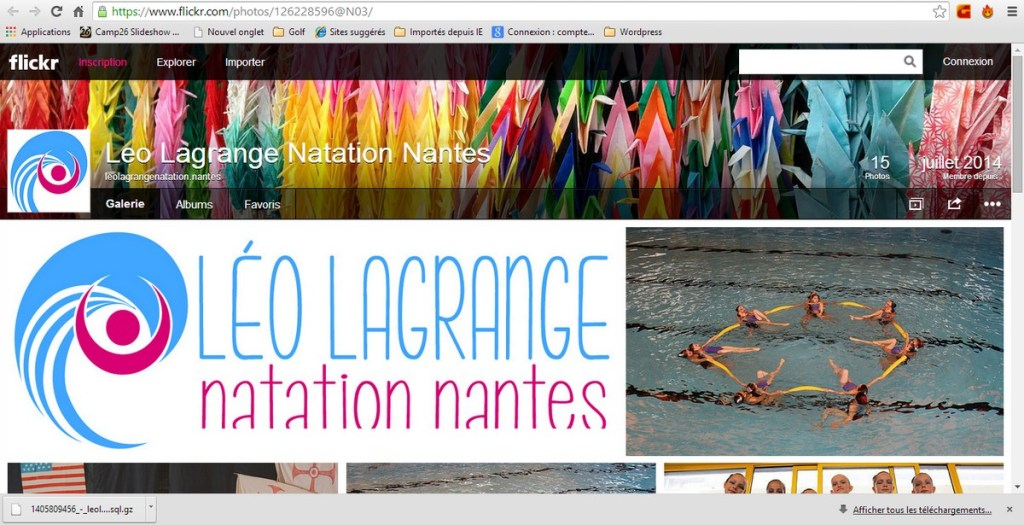 Site Flickr de Léo Lagrange Natation Nantes