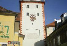 Schwammerlturm von der Murseite