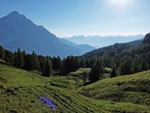 Bella giornata di sole in montagna