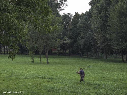 Un-allevatore-al-lavoro-nella-tenuta