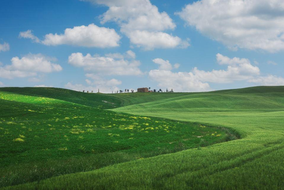 Tuscany's Best