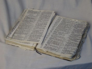 Pastor's Bible -- Before