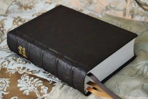 Hardcover Bible in spindled dark brown kangaroo