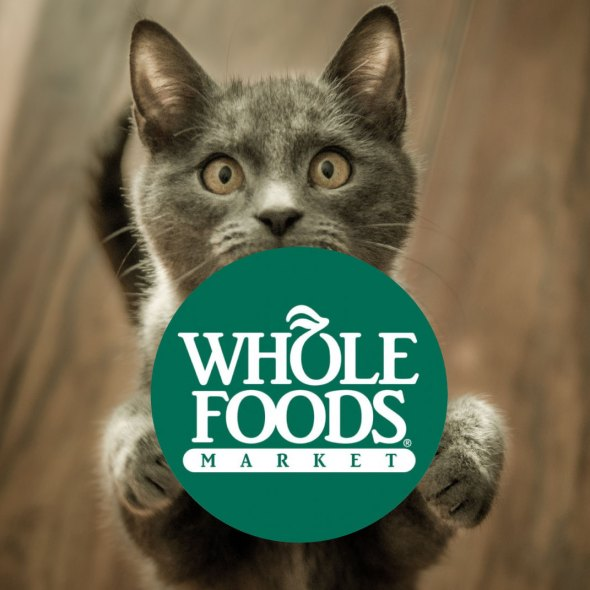 Kitten and Whole Foods logo