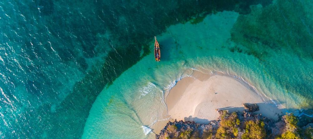 Zanzibar, leopard travel