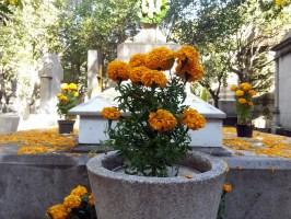 Panteón Francés. Ciudad de México