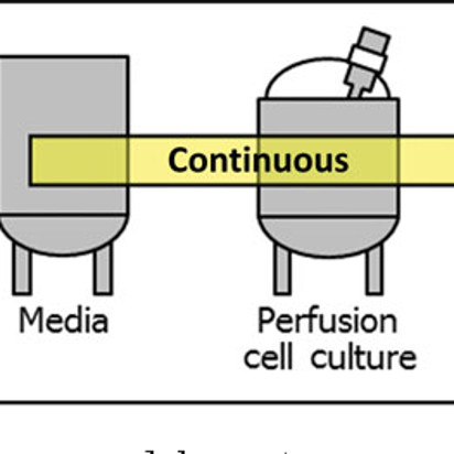 Continuous Flow Bioprocessing