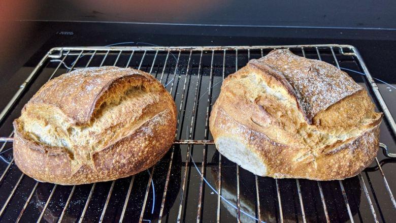 pain maison en boule bien développé avec belles grignes