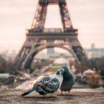 Les lieux de rencontre romantiques de Paris