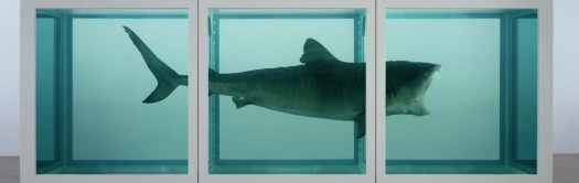 cropped-Damien-Hirst-The-Physical-Impossibility-of-Death-in-the-Mind-of-Someone-Living-1991.jpg