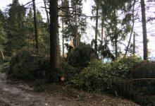 Photo of La conta dei danni del maltempo di fine ottobre a Pertica Alta