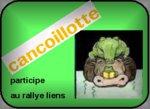 Rallye liens : pratiques artistiques