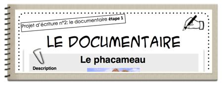 Projet d'écriture : le faux documentaire