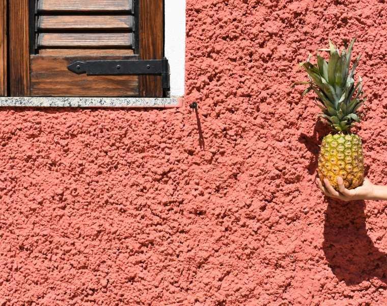 giugno - le plume ananas