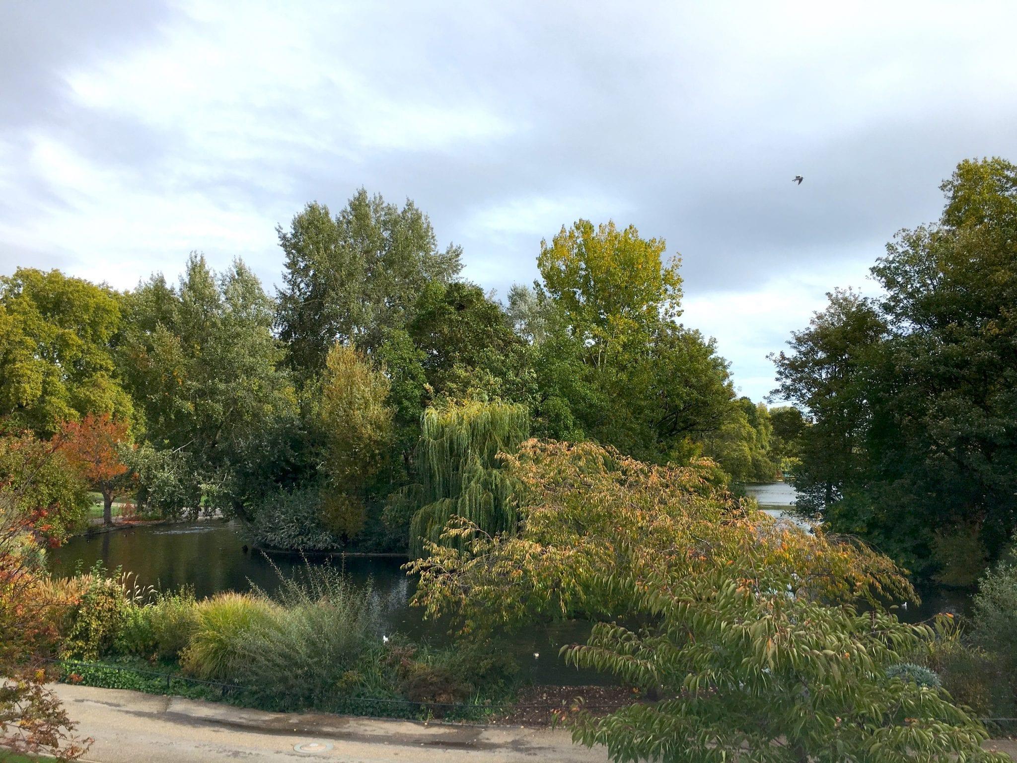 St Jame's Park Prima volta a Londra - Le Plume