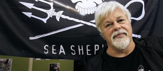 Le cap'tain Paul Watson promet la guerre à outrance contre les  pêcheurs de thon en Méditerranée