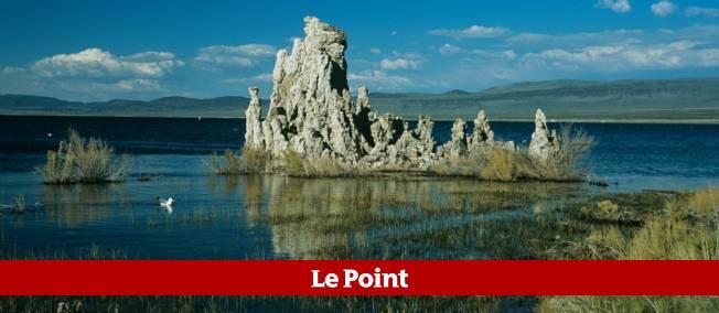C'est dans les sédiments riches en arsenic du lac Mono, en Californie, que la fameuse bactérie GFAJ-1 avait été découverte.