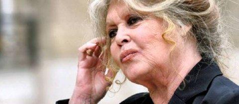 Brigitte Bardot s'est offert lundi de pleines pages dans la presse pour demander au gouvernement l'abolition de l'abattage rituel et la fermeture des abattoirs de chevaux.