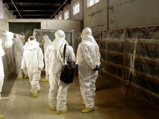 Des officiels sud-coréens en combinaison de protection contre la radioactivité, inspectent un bâtiment de stockage à l'usine de retraitement du combustible de Yongbyon, le 16 janvier 2009 © Ministère sud-coréen des Affaires étrangères Ministère sud-coréen des Affaires étrangères/AFP