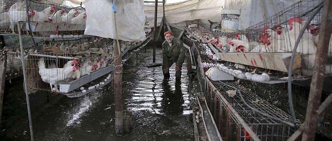 L'Égypte détournerait de l'eau de mer pour inonder les tunnels frontaliers, provoquant des glissements de terrain et des dommages aux activités civiles.