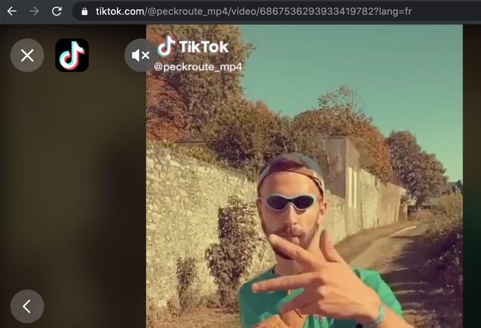 retrieve video url TikTok download