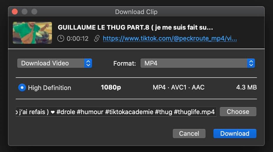 download video TikTok 4k downloader