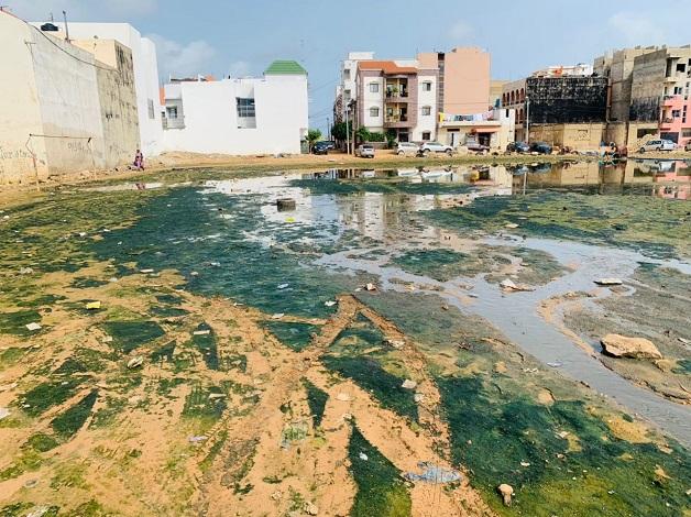 Actes de sabotage dans le réseau d'assainissement à Pikine rue 10 : les images d'un vandalisme sans nom