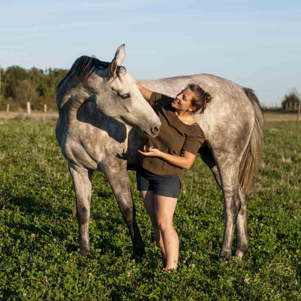 Photographe equestre Ile de France