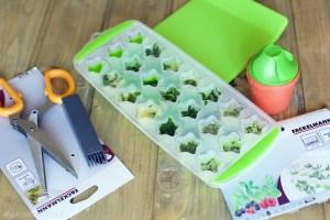 come conservare le erbe aromatiche congelatore