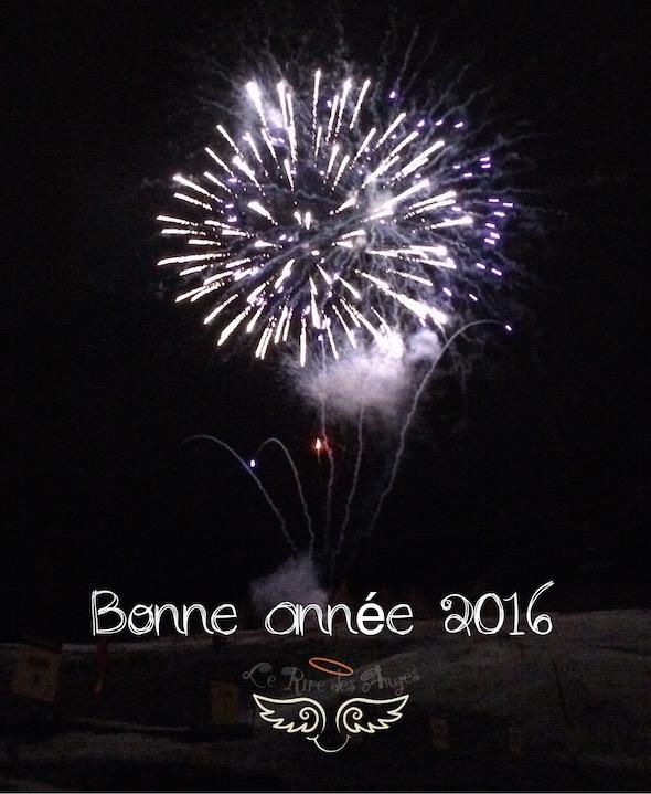 Pour une belle année 2016