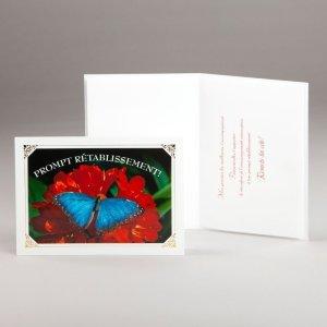 carte prompt rétablissement-papillon bleu