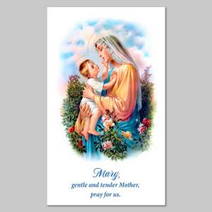 holy picture - mary, tender mother