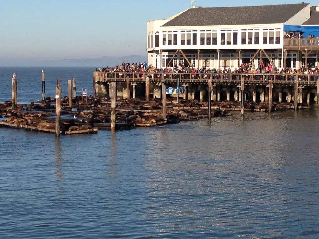Fishermans Wharf San Francisco Restaurants