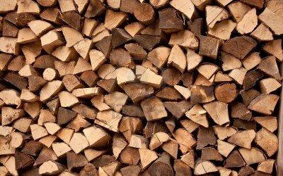 Le bois une énergie disponible