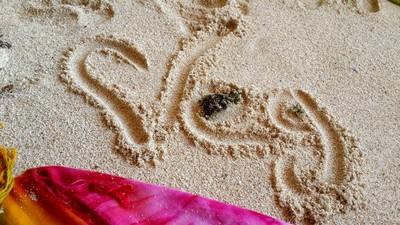 De la Californie à Bali : un couple marseillais globe trotter. Végétarisme
