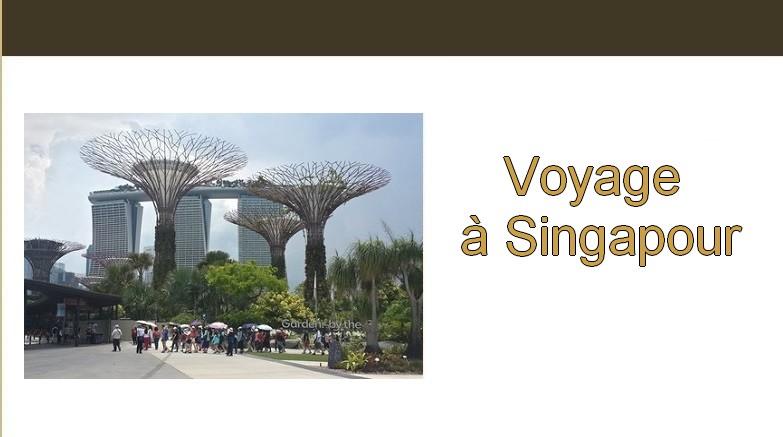 Carnet de voyage. Voyage à singapour