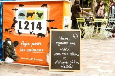 Différence entre végétarien, vegan, végétalien : tout savoir! Vegan Place