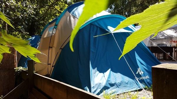 Vegan Surf Camp holidays dans les Landes : le bon plan. Le camp