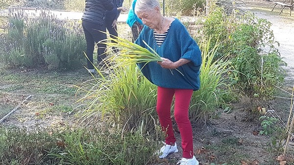 Irène Grosjean, naturopathe et coach en alimentation vivante. Le jardin