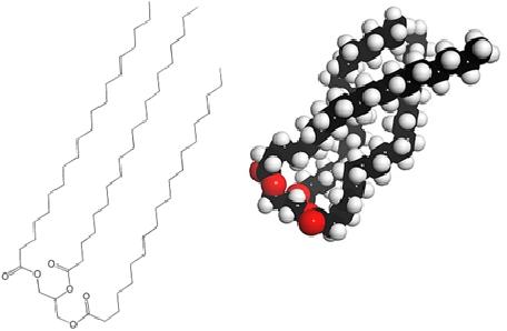 molecule-huile