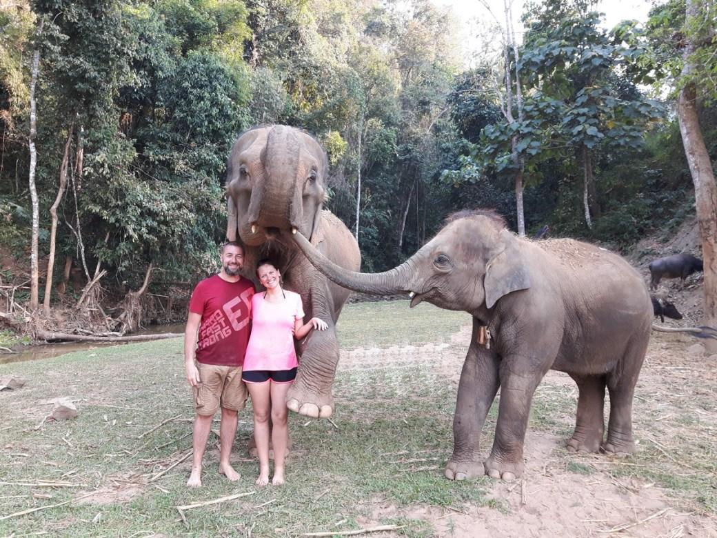 rencontre avec les éléphants en Thaïlande