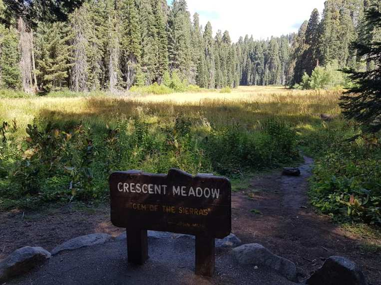 Crescent Meadow - Sequoia national park - USA