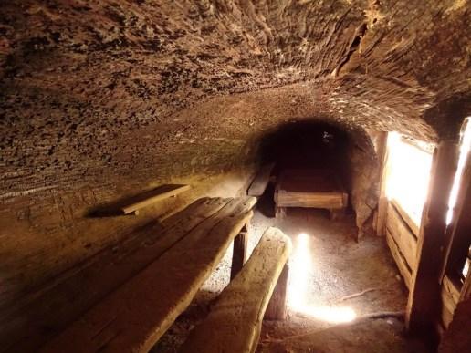 intérieur de la Tharps's Log - Sequoia Park
