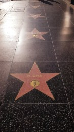 Walk of fame - Hollywood Boulevard - Los Angeles