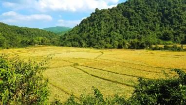 campagne près du village de Ban Na vers Muang Ngoi