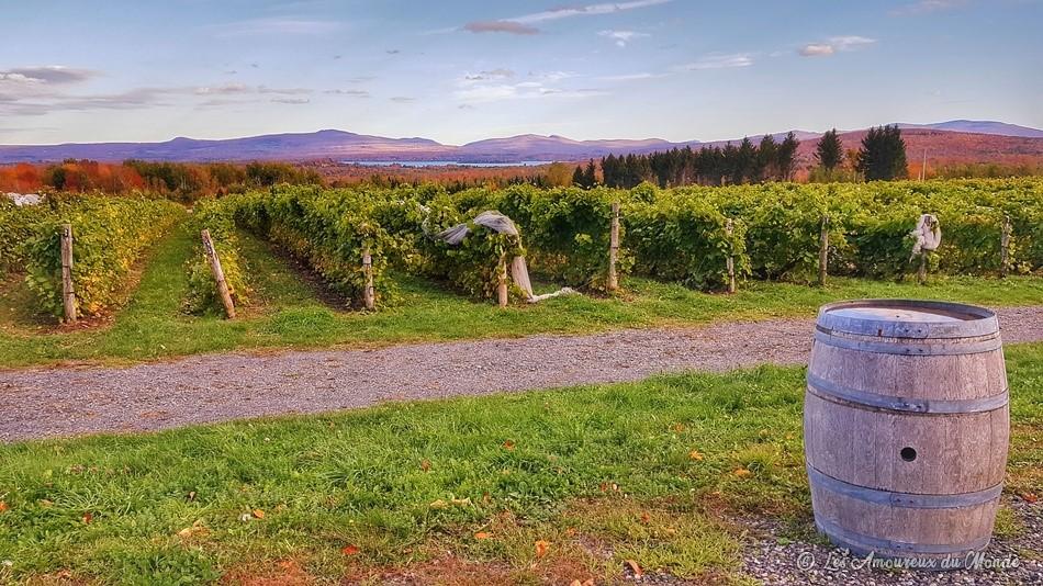 Domaine Les Brome/Léon Courville, vigneron - Cantons de l'Est - Canada