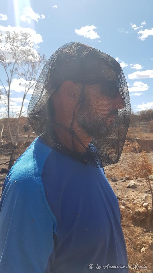 les mouches en Australie