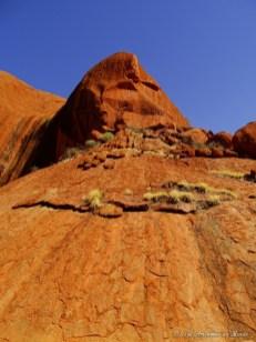 Faire le tour de Uluru